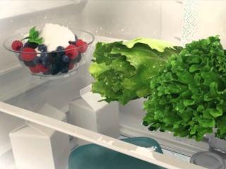 Режим интенсивной заморозки ActionFreeze в холодильниках Eleсtrolux